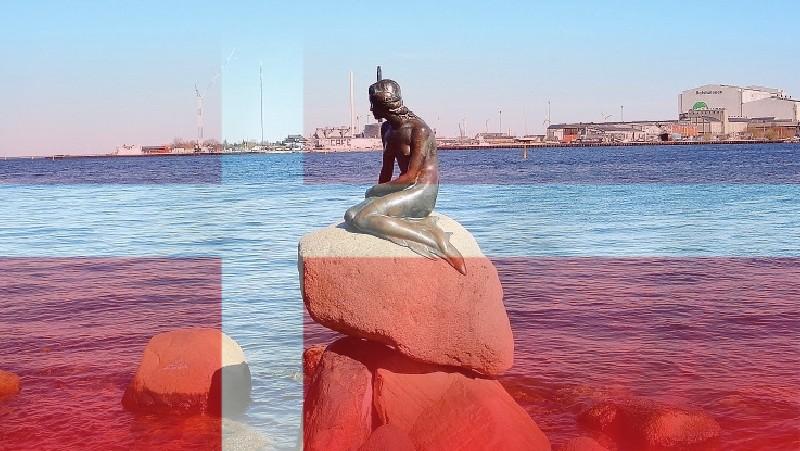 Wyjazd studyjny do Danii